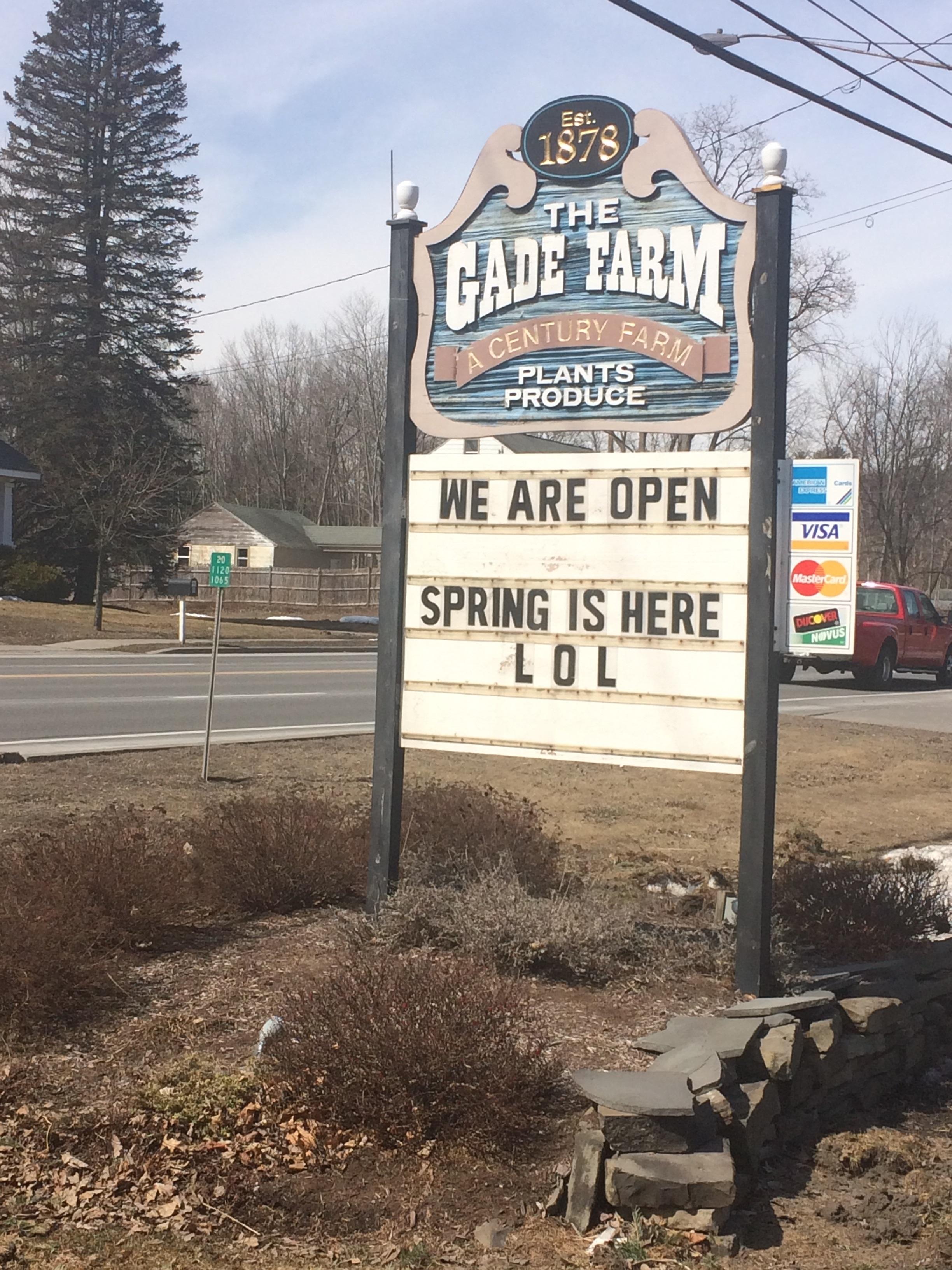 Spring--LOL